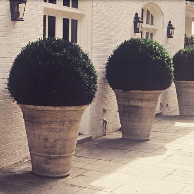 Giant Garden Pots Large terracotta plant pots uk terracino terracotta pots planters terracotta pots the garden box workwithnaturefo